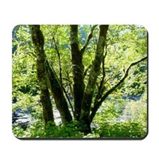 WILDWOOD Mousepad