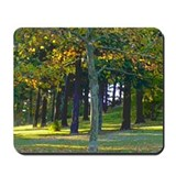 Mt. TABOR Mousepad