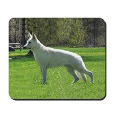Cute White shepherd Mousepad