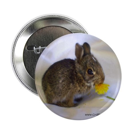 "Hoppity 2 2.25"" Button (10 pack)"