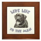 Unique Black lab art Framed Tile