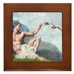 Creation/Maltese + Poodle Framed Tile