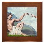 Creation/Maltese + Poodle Framed Tile