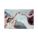 Creation/Maltese + Poodle Rectangle Magnet (100 pa