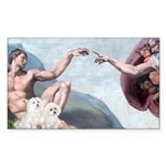 Creation/Maltese + Poodle Rectangle Sticker 10 pk