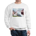 Creation/Maltese + Poodle Sweatshirt