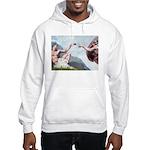 Creation/Maltese + Poodle Hooded Sweatshirt