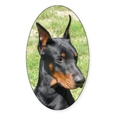 Doberman Oval Decal