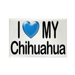 My Chihuahua Rectangle Magnet (10 pack)