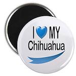 My Chihuahua 2.25