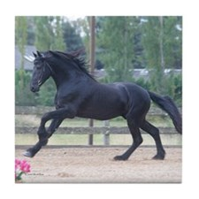 Dakota-Friesian Stallion-Tile Coaster
