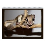 Flying Squirrel Wall Calendar