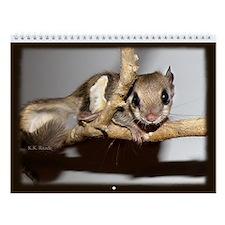 Flying Squirrel Wall Calendar
