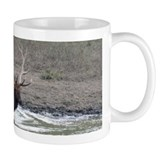 Trophy Elk Coffee Mug