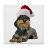 Wirehaired Dachshund Christmas Tile Coaster
