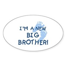 New Big Brother Oval Decal