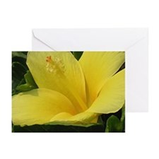 YELLOW LILY Greeting Cards (Pk of 20)