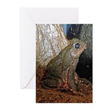 cane toad Greeting Cards (Pk of 20)