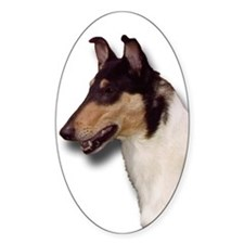 Collie_Place Oval Sticker (10 pk)