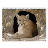 Cougar Wall Calendar