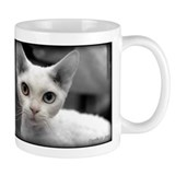 Cute Devon rex kitten Mug