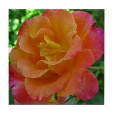 Orange Sunset Rose Tile Coaster