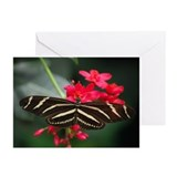 Zebra Longwing Greeting Cards (Pk of 10)