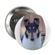 "Collies 2.25"" Button"