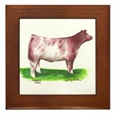 Shorthorn Steer Framed Tile