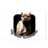 Presa Canario Postcards (Package of 8)