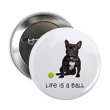 French Bulldog Life 2.25