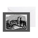 Two Greyhounds Greeting Cards (Pk of 20)