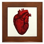 Vintage Anatomical Human Heart Framed Tile
