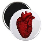 Vintage Anatomical Human Heart Magnet