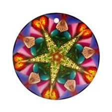 Colorful Star Kaleidoscope Ornament (Round)