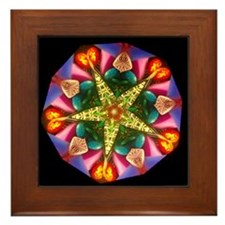 Colorful Star Kaleidoscope Framed Tile