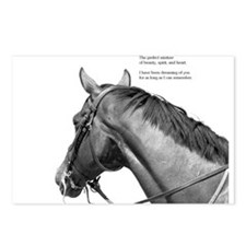 Cute Horses Postcards (Package of 8)