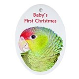 Amazon Parrot Baby's 1st Christmas Oval Ornament