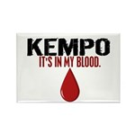 In My Blood (Kempo) Rectangle Magnet (10 pack)