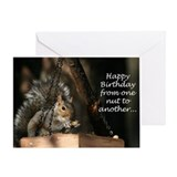 Cute Squirrel Greeting Card