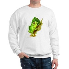 Cute Tree frog Sweatshirt