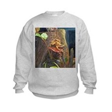 panamanian golden frog Sweatshirt
