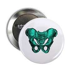 "Human Anatomy Pelvis 2.25"" Button"