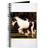 Unique Gypsy vanner horse Journal
