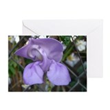 Snail Flower Blank Greeting Card