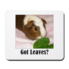 Got Leaves? Mousepad