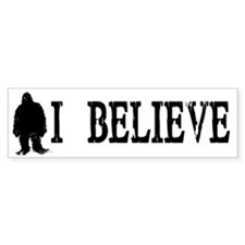 I Believe Bumper Sticker (10 pk)