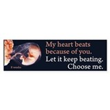 Choose Me Bumper Car Sticker