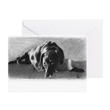 Lazy Dog Greeting Cards (Pk of 20)