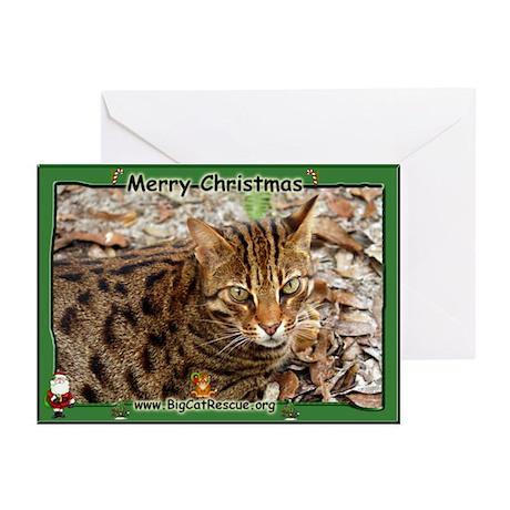 #001 Bengal Cat Christmas Cards (Pk of 20